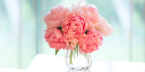 Carnations-for-your-partner