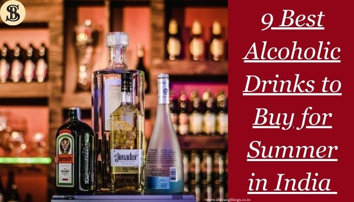 9 Best Alcoholic Drinks to Buy for Summer in India